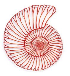Meredith Woolnough, Red Ammonite, 2015, embroidery thread and pins on paper.  Meredith Woolnough is a visual artist from Newcastle, Australia. Her embroidered traceries capture the beauty of nature in knotted threads. (Pinned from Woolnough's blog page by Nancy Lee Moran in 2015) #ammonite #red #thread
