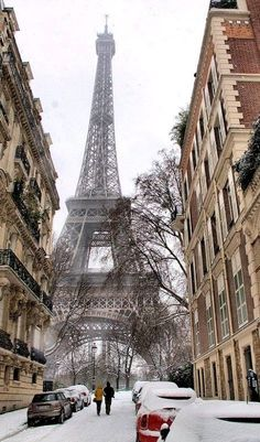 Flocons de Paris, France in winter