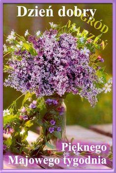 Glass Vase, Herbs, Plants, Humor, Makeup, Polish Sayings, Pictures, Make Up, Humour