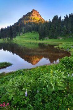 Tipsoo Lake, Mount Rainier, Washington