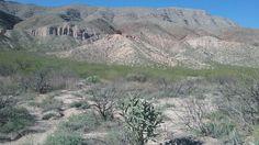 Robledo Mountains