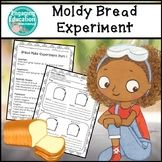 Moldy Bread Experiments Monsters and Mold (Zoey and Sassafras) 4th Grade Classroom, Classroom Activities, Elementary Teacher, Elementary Education, Creative Teaching, Teaching Ideas, Fun Learning, Student Learning, Teaching Materials
