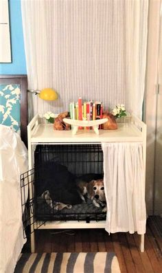 These DIY IKEA hacks for your pets replace essentials like dog crates, dog beds, and cat litter boxes - except they actually look good. Ikea Storage, Crate Storage, Ikea Furniture Hacks, Ikea Hacks, Ikea Dog, Bunny Beds, Ikea Kallax Unit, Ikea Cupboards, Diy Dog Crate