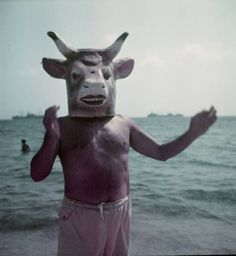 Pablo Picasso wearing a cow& head mask on beach at Golfe Juan near Vallauris, France, 1949 by Gjon Mili for LIFE. Gjon Mili, Cow Mask, Francoise Gilot, Cow Head, Head Mask, Animal Heads, Great Life, Les Oeuvres, Art History