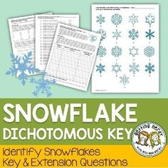 Students will have a flurry of fun with our Snowflake Dichotomous Key activity as they use critical observation skills to identify each individual snowflake - no two are alike! Oh what fun it is to identify snowflakes during the winter holidays! Science Classroom, Teaching Science, Science Activities, Teaching Ideas, Science Resources, Science Projects, Teaching Resources, Biology Lessons, Science Lessons