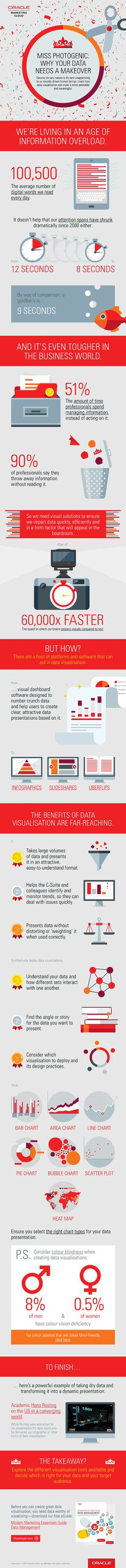 Miss Photogenic: Why your data needs a makeover - #Infographic / ttp://nextlevelinternetmarketing.com