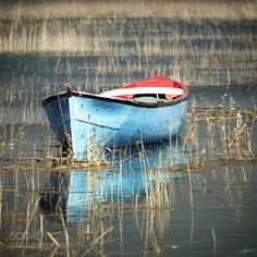 Rowing Boat by alpcem
