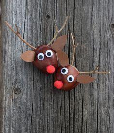 Rudolph aus Kastanien basteln // www.ch/bricos/ - fleurysylvie : Rudolph aus Kastanien basteln // www. Autumn Crafts, Fall Crafts For Kids, Nature Crafts, Diy For Kids, Kids Crafts, Intarsia Wood Patterns, Wood Craft Patterns, Ideas Para Trabajar La Madera, Conkers Craft