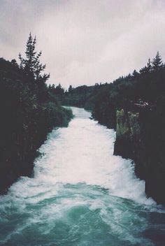rushing river • forest • trees • travel • wanderlust