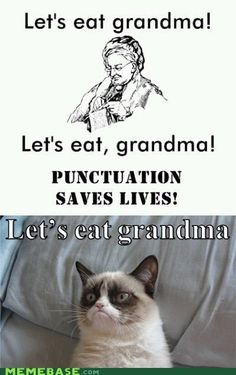 Grumpy Cat - Want Not, Waste Not. This combines two of my favorite things: grammar and grumpy cat. Perfect. :)