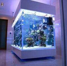 39 fabulous interiors home design with fascinating aquarium 12 Marine Fish Tanks, Marine Tank, Marine Aquarium, Reef Aquarium, Aquarium Fish Tank, Aquarium Craft, Aquarium House, Cool Fish Tanks, Saltwater Fish Tanks