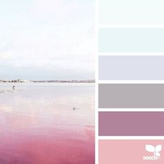 today's inspiration image for { color horizon } is by @in_somnia_ ... thank you, Judith, for another wonderful #SeedsColor image share!