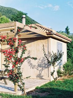 Vanessa Jackman: Weekend Life....Levendis Estate, Ithaca, Greece