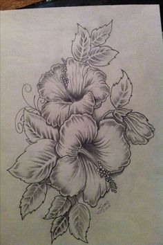 Hibiscus Flower Drawing with Tribal Hibiscus Flower Drawing with Tribal. Hibiscus Flower Drawing with Tribal. Hibiscus Flower Hibiscus Flower Drawing Coloring Page in hibiscus flower drawing Hibiscus Flower Tattoo Sketch Best Tattoo Ideas Hawaiian Flower Drawing, Hibiscus Flower Drawing, Hawaiian Flower Tattoos, Hibiscus Flower Tattoos, Flower Thigh Tattoos, Hibiscus Flowers, Lilies Flowers, Hawaiian Flowers, Cactus Flower