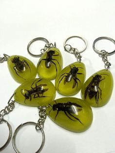 FREE SHIPPING 24 PCS real honeybee glow in the dark style fashion insect bee keychain promotional Keyring Special Gift