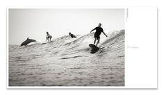 Surf Texas book by Pentagram