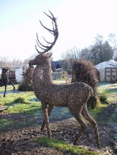 Amazing stag willow sculpture | follow @sophieeleana