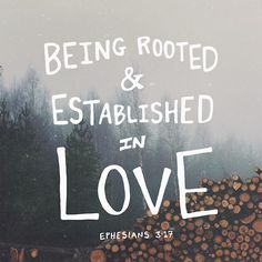 Ephesians 3:17 - Rooted in love