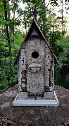 Old tool box birdhouse.