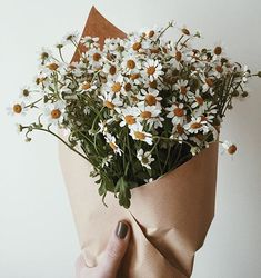 the art of slow living Spring Aesthetic, Flower Aesthetic, Dried Flower Bouquet, Dried Flowers, My Flower, Beautiful Flowers, Photo New, No Rain, Foto Pose