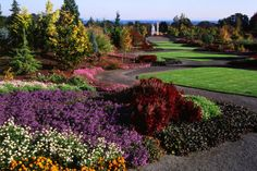 3. The Oregon Garden  Located in Silverton, the Oregon Garden is a beautiful botanical garden that spans 80 acres.