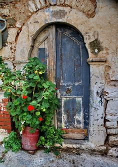 .red geraniums, blue door.