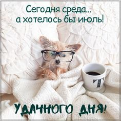 Прикольная картинка про среду Good Morning Coffee Cup, Morning Greetings Quotes, Nature Animals, Happy Morning, A Funny, Holiday, Cards, Inspiration, Album
