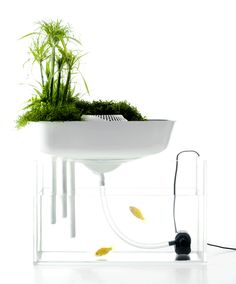 """Floating Garden"" design based on hydroponics"