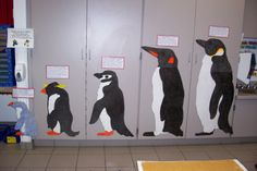 I copied this idea from Mrs. Ramseier (amazing kindergarten teacher) that I work with. The penguins are life size, and the students think i. Winter Activities, Preschool Activities, Preschool Winter, Winter Fun, Winter Theme, Snow Theme, Penguins And Polar Bears, How Tall Are Penguins, Kinds Of Penguins