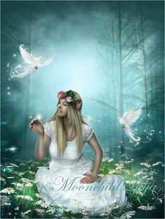 Wood Of Magic by moonchild-ljilja on deviantART