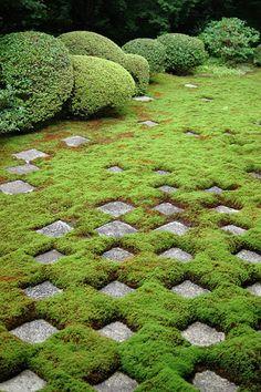 Garden at Tofuku-ji temple, Kyoto, Japan