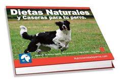 perro alimentos prohibidos tóxicos verdades en la nutrición 40 alimentos prohibidos natural o no puede ser toxico en dosis altas