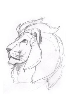 Pride (Lion Illustration) on BehanceYou can find illustration art drawing and more on our website.Pride (Lion Illustration) on Behance Sketchbook Drawings, Cool Art Drawings, Drawing Sketches, Drawing Tips, Lion Drawing Easy, Drawing Drawing, Drawing Ideas, Tattoo Sketches, Drawing Tutorials