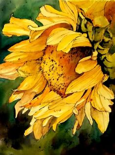 Watercolor Sunflower Greeting Card for Sale by Annemiek Groenhout Watercolor Sunflower, Sunflower Art, Watercolor Tips, Watercolor Techniques, Watercolor Flowers, Watercolor Paintings, Watercolors, Painting Inspiration, Art Drawings