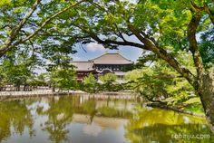 Todaiji Temple, Nara y la mayor estatua de Buda Vairocana del mundo