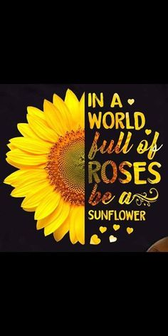 Roses be a sunflower sunflower shirt, tumbler quotes, country girl quotes, diy tumblers Sunflower Quotes, Sunflower Pictures, Sunflower Shirt, Cute Quotes, Great Quotes, Quotes To Live By, Girl Quotes, Positive Quotes, Motivational Quotes