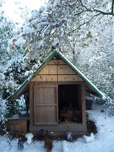 Hen house in Snow  - Poulailler givré by holistic.hen