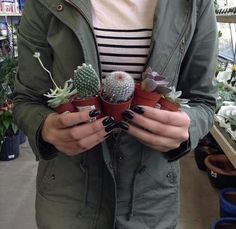 grafika plants, cactus, and green Cacti And Succulents, Cactus Plants, Mini Cactus, Cactus Farm, Plants Are Friends, Tumblr, Cactus Y Suculentas, Indoor Plants, Earthy
