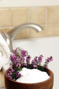 epsom salt to get rid of eczema