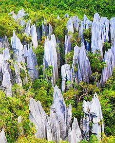 Limestone pinnacles of Mount Api,Gunung Mulu National Park, Sarawak, Malaysia  #Malaysia  #pinnacles http://reversehomesickness.com