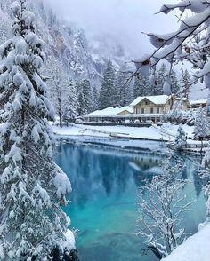 Картинки по запросу winter wonderland