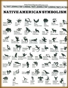 native american animal symbols and meanings | Native American / Native American…