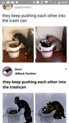 A summary of black panther