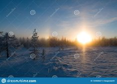 Photo about Sunset in the forest, december with snow in the air. Image of december, snow, county - 134460627 Norway, Sunrise, December, Europe, Snow, Stock Photos, Landscape, Image, Sunrise Photography