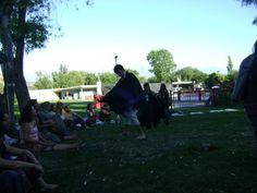 Bailando Choique Baile del ave