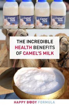 The Incredible & Surprising Health Benefits of Camel's Milk