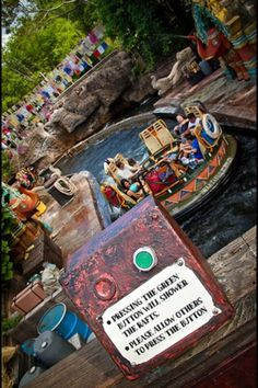 Kali River Rapids at Disney's Animal Kingdom - you will get soaked on this ride!