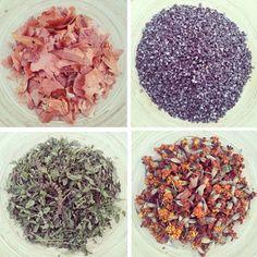 Materias colorantes empleadas en el Workshop de Tintes Naturales de El Estudio de la Casita de Wendy: cochinilla canaria, cáscara de cebolla, hojas de menta y flores de tagetes