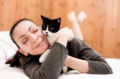 Why felines prefer females