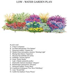 Shade Garden Layout | Made in the shade (or sun): Green Scene garden designs use... - willkommen